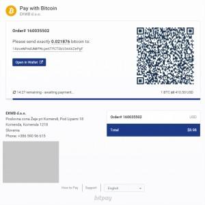 bitpay_process